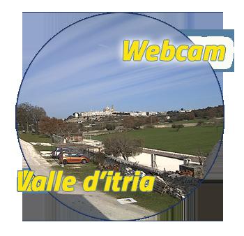 webcam350